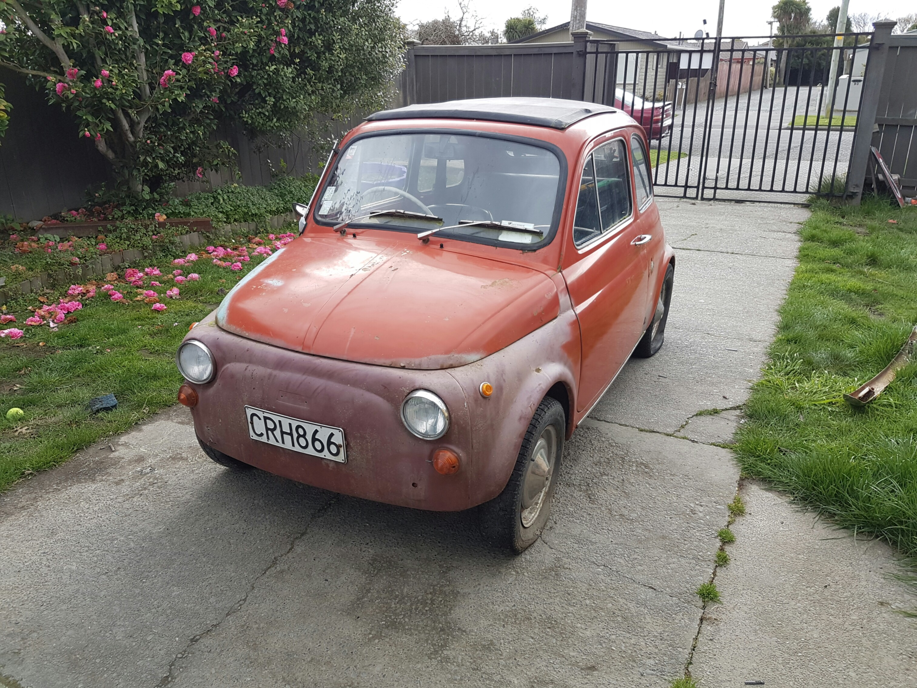 fiat nz wikimedia file commons wiki